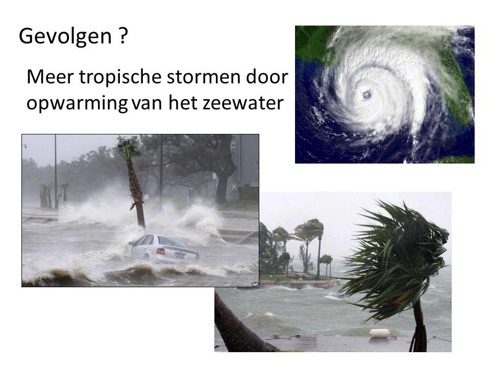 Gevolgen Meer tropische stormen door opwarming van het zeewater