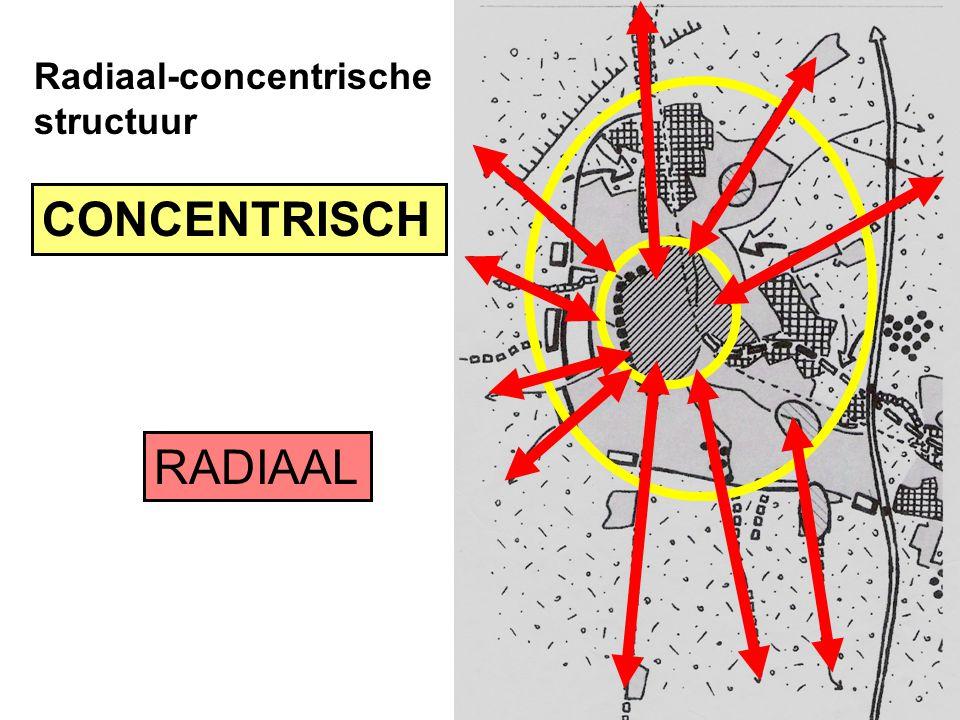 Radiaal-concentrische structuur