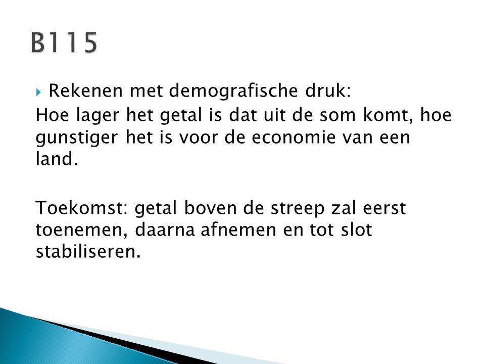 B115 Rekenen met demografische druk: