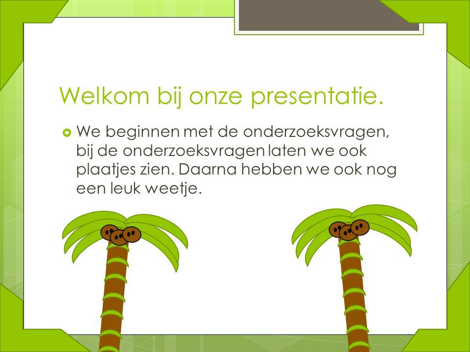 Welkom bij onze presentatie.