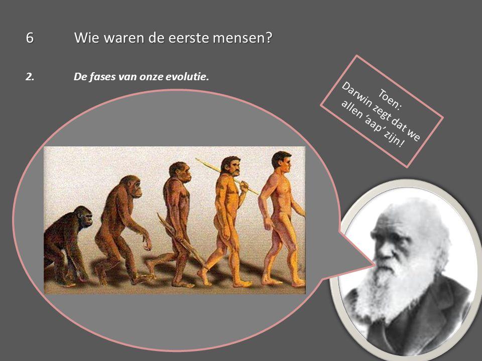 Darwin zegt dat we allen 'aap' zijn!