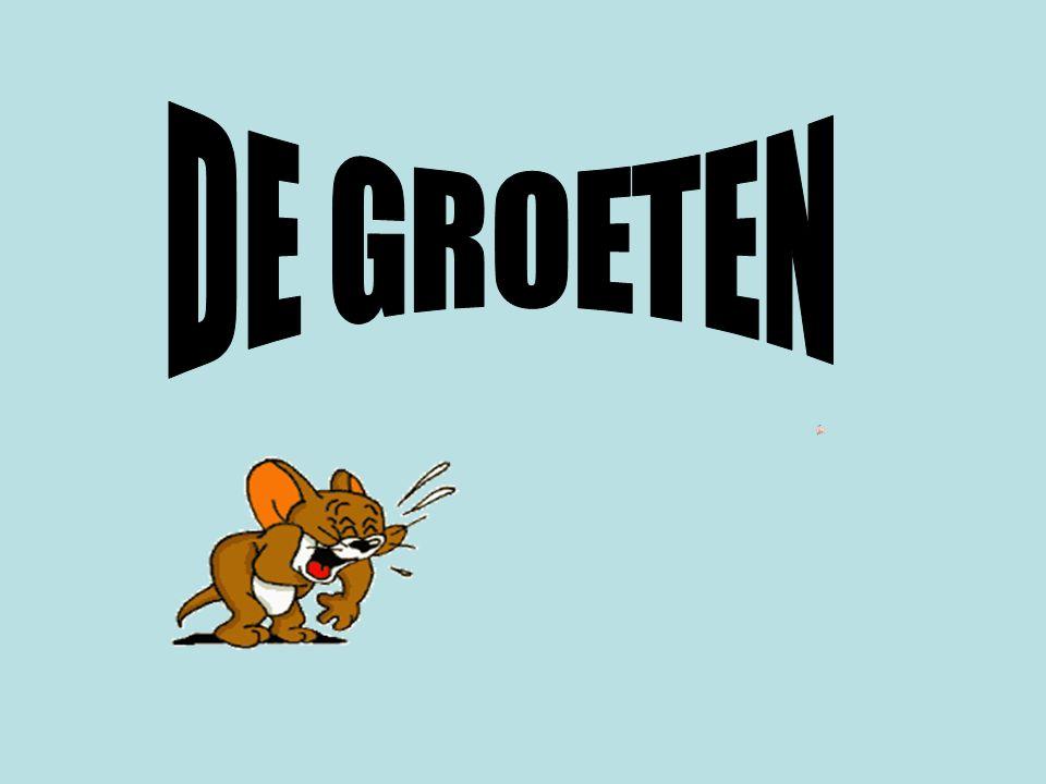 DE GROETEN SNARF PRODUCTIONS 2007.