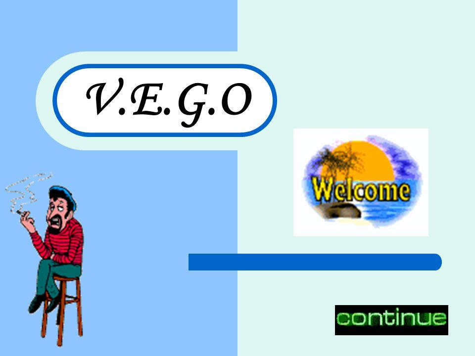 V.E.G.O
