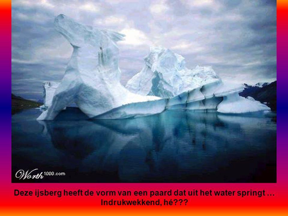 Deze ijsberg heeft de vorm van een paard dat uit het water springt …