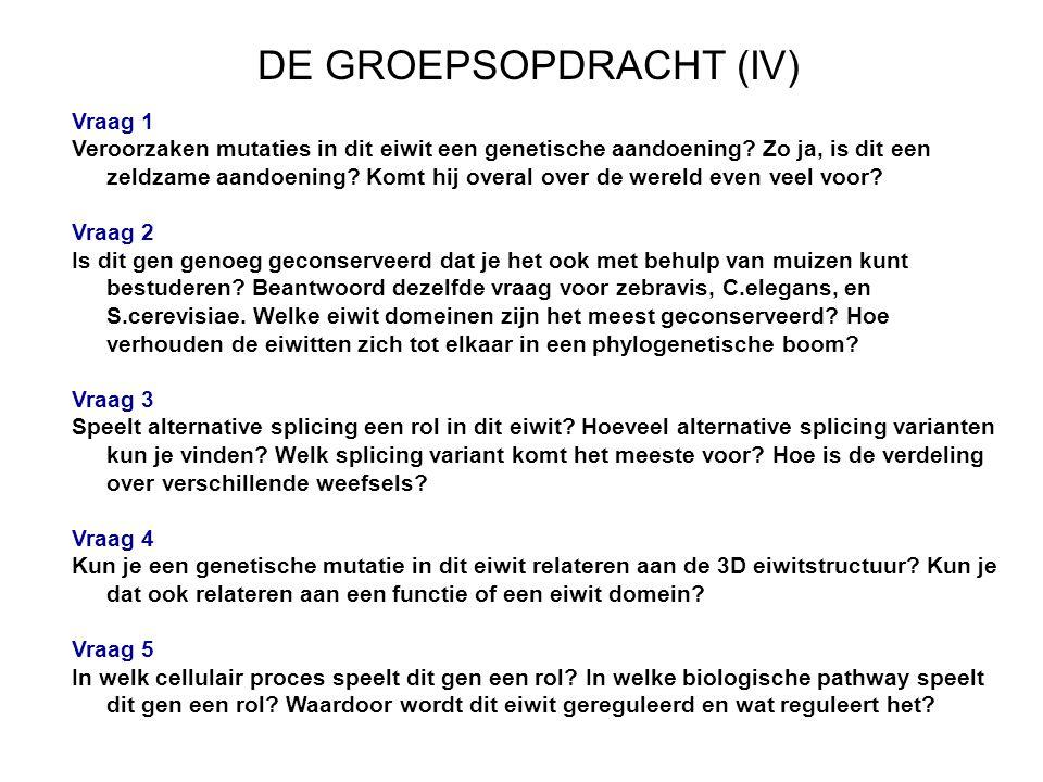 DE GROEPSOPDRACHT (IV)