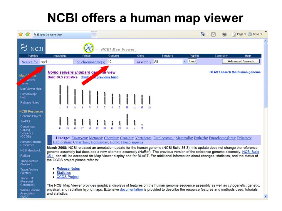 NCBI offers a human map viewer