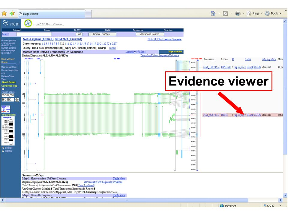 Evidence viewer