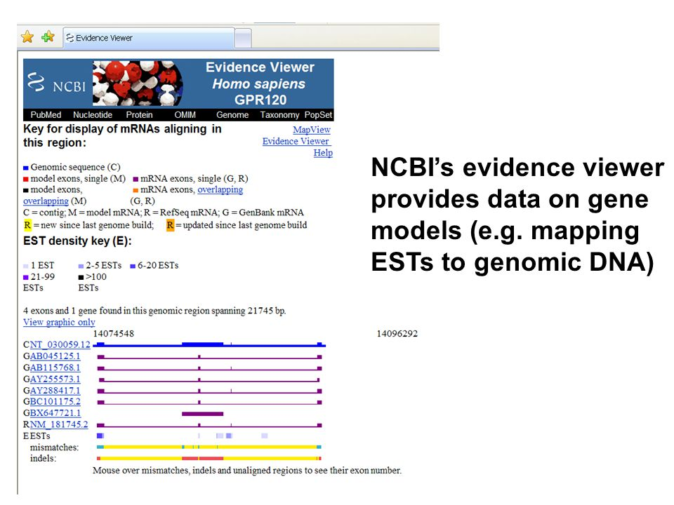 NCBI's evidence viewer