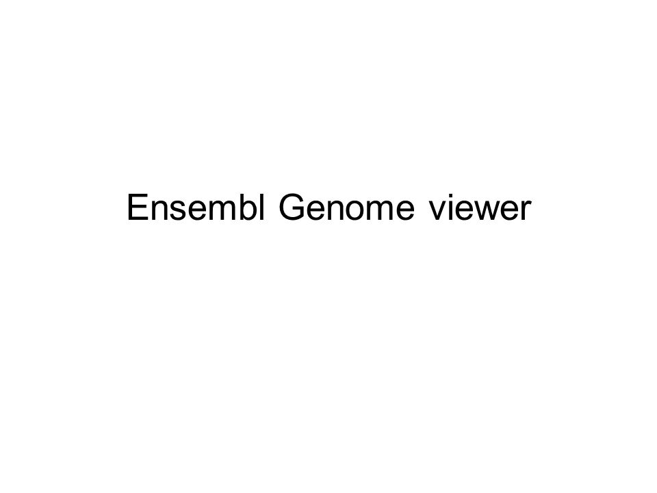 Ensembl Genome viewer