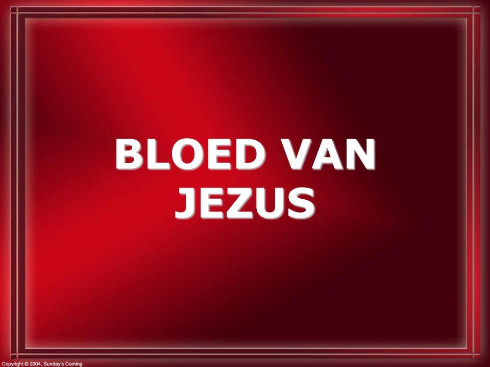 BLOED VAN JEZUS
