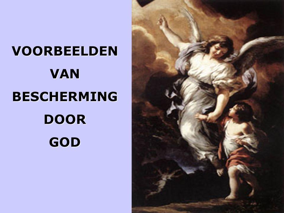 VOORBEELDEN VAN BESCHERMING DOOR GOD