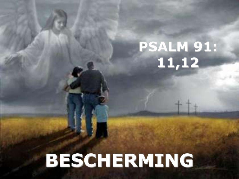 PSALM 91: 11,12 BESCHERMING
