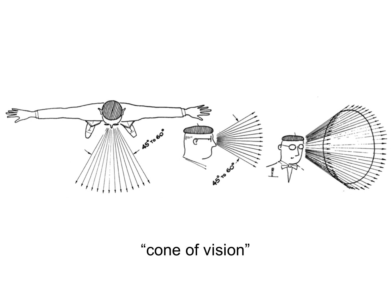 Cone of vision, alles daarbuiten wordt vertekend!