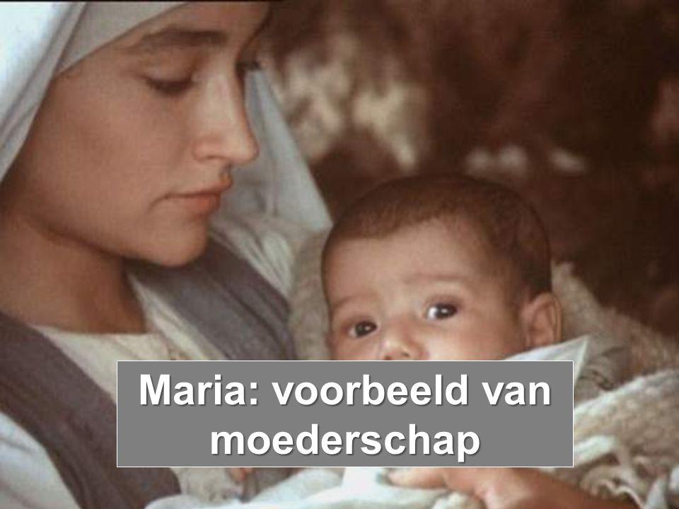 Maria: voorbeeld van moederschap