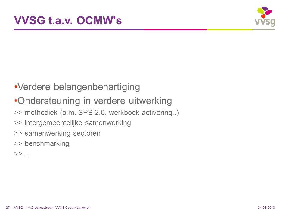 VVSG t.a.v. OCMW s Verdere belangenbehartiging