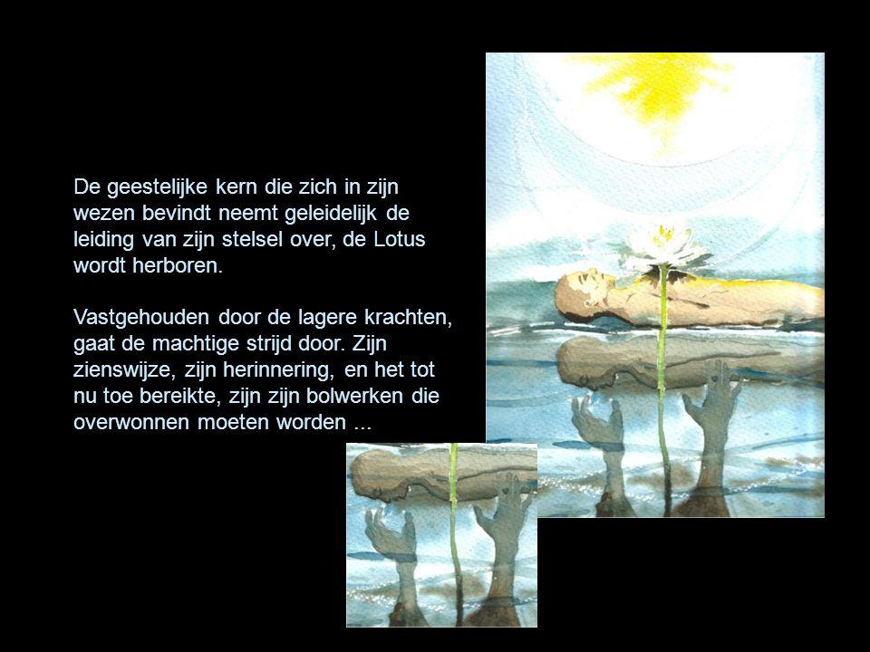 De geestelijke kern die zich in zijn wezen bevindt neemt geleidelijk de leiding van zijn stelsel over, de Lotus wordt herboren.