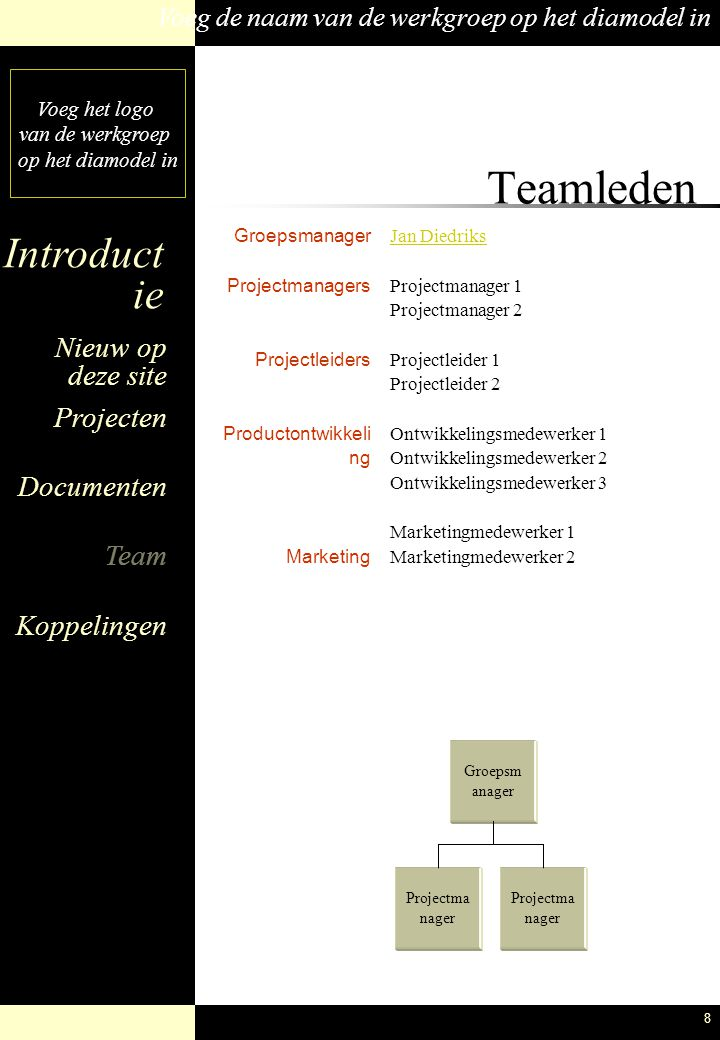 Teamleden Groepsmanager Projectmanagers Projectleiders