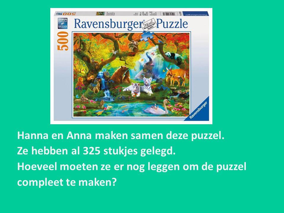 Hanna en Anna maken samen deze puzzel.