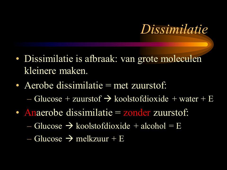 Dissimilatie Dissimilatie is afbraak: van grote moleculen kleinere maken. Aerobe dissimilatie = met zuurstof: