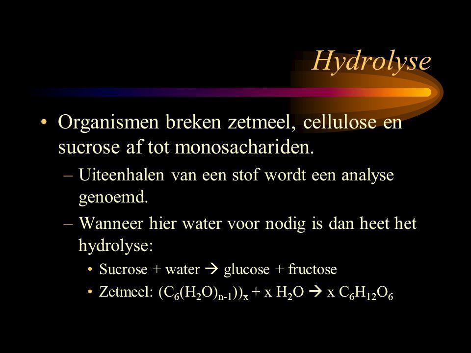Hydrolyse Organismen breken zetmeel, cellulose en sucrose af tot monosachariden. Uiteenhalen van een stof wordt een analyse genoemd.