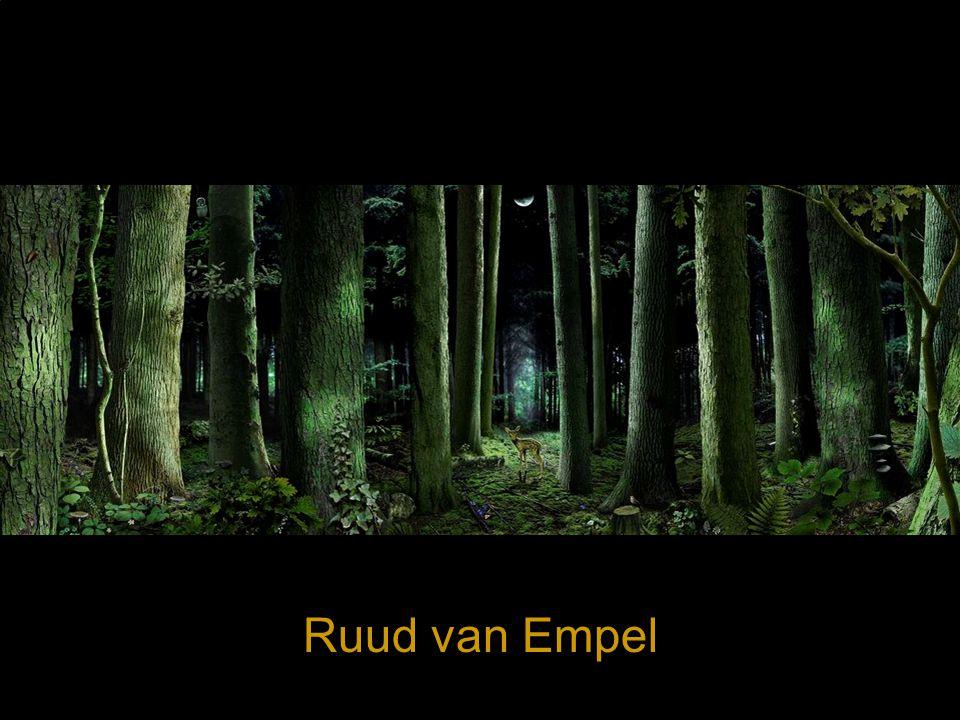 Een ImmSp is een ruimte waar je je in kunt wanen, in opgenomen voelt, enz Werk van Ruud van Empel - voorbeeld