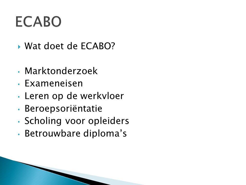 ECABO Wat doet de ECABO Marktonderzoek Exameneisen