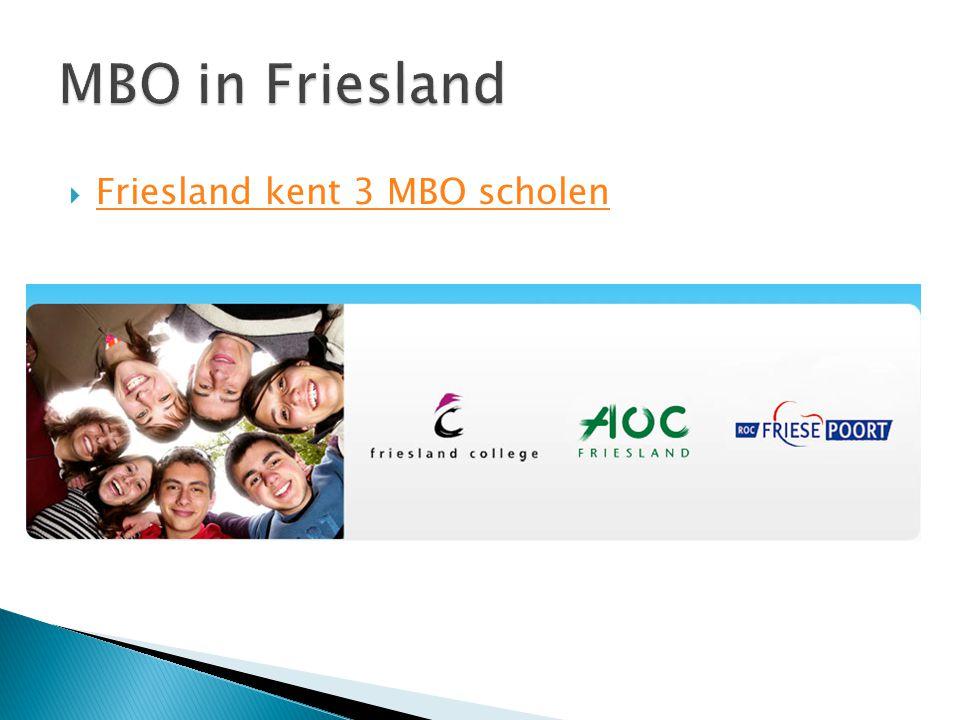 MBO in Friesland Friesland kent 3 MBO scholen