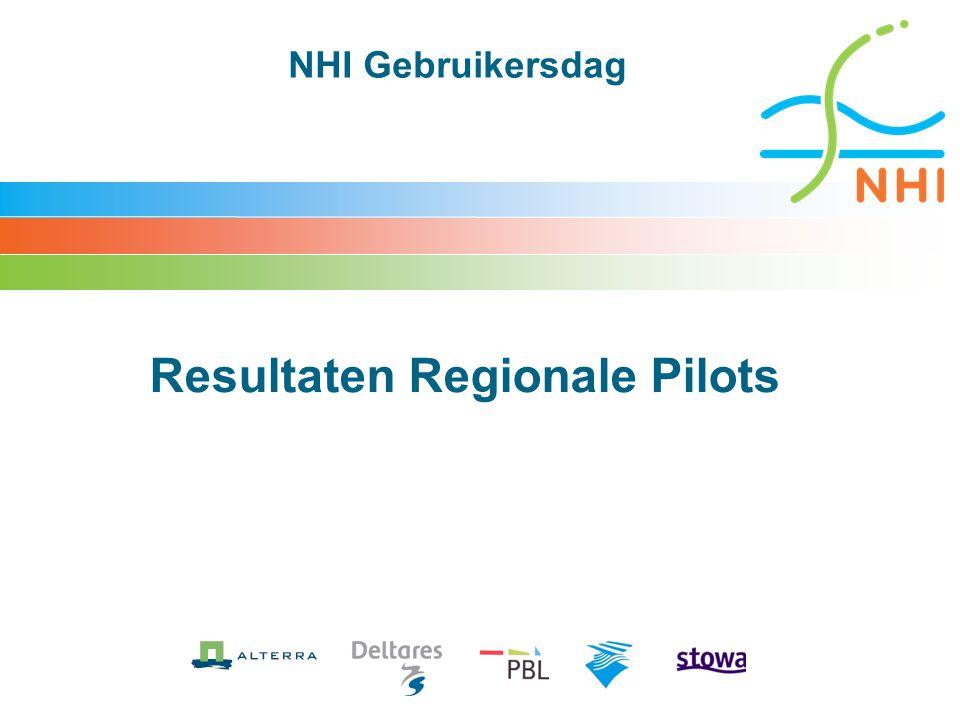 Resultaten Regionale Pilots