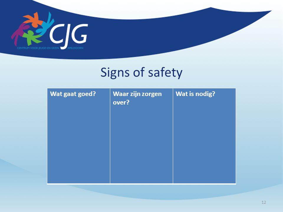 Signs of safety Wat gaat goed Waar zijn zorgen over Wat is nodig