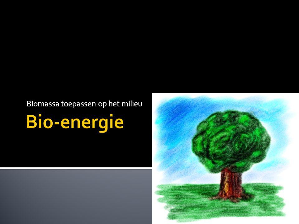 Biomassa toepassen op het milieu