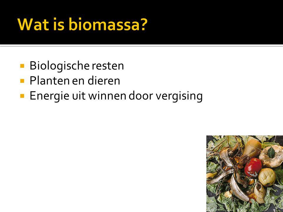 Wat is biomassa Biologische resten Planten en dieren