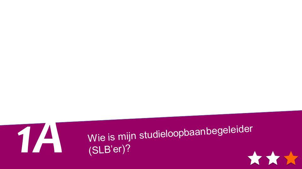 Wie is mijn studieloopbaanbegeleider (SLB'er)