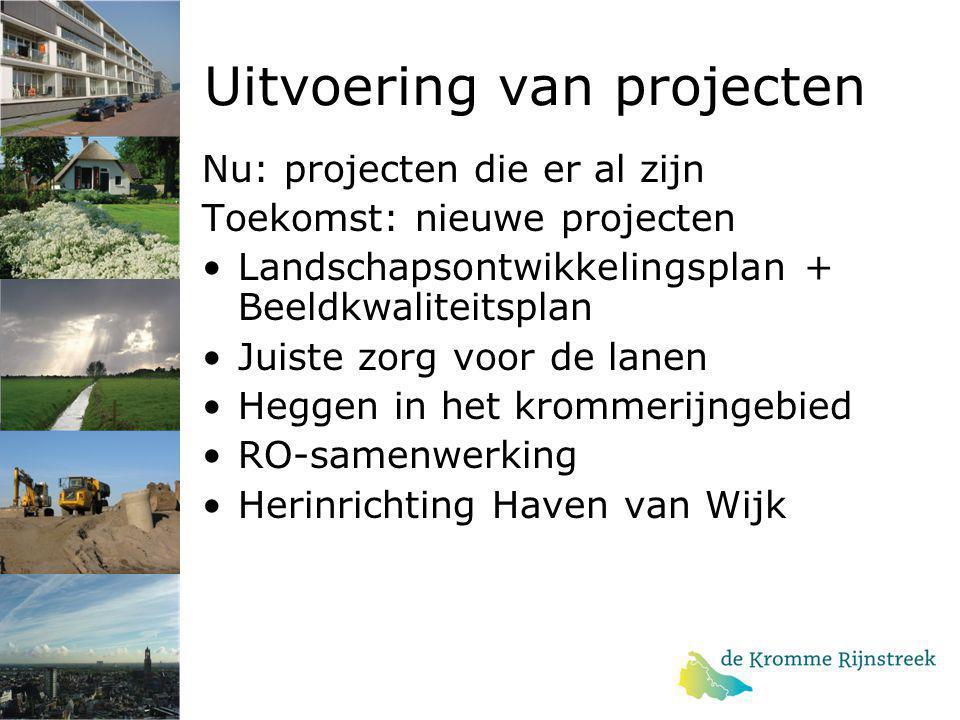 Uitvoering van projecten