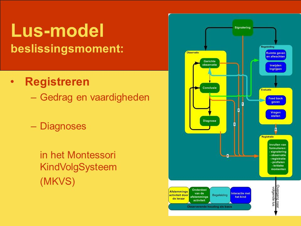 Lus-model beslissingsmoment: