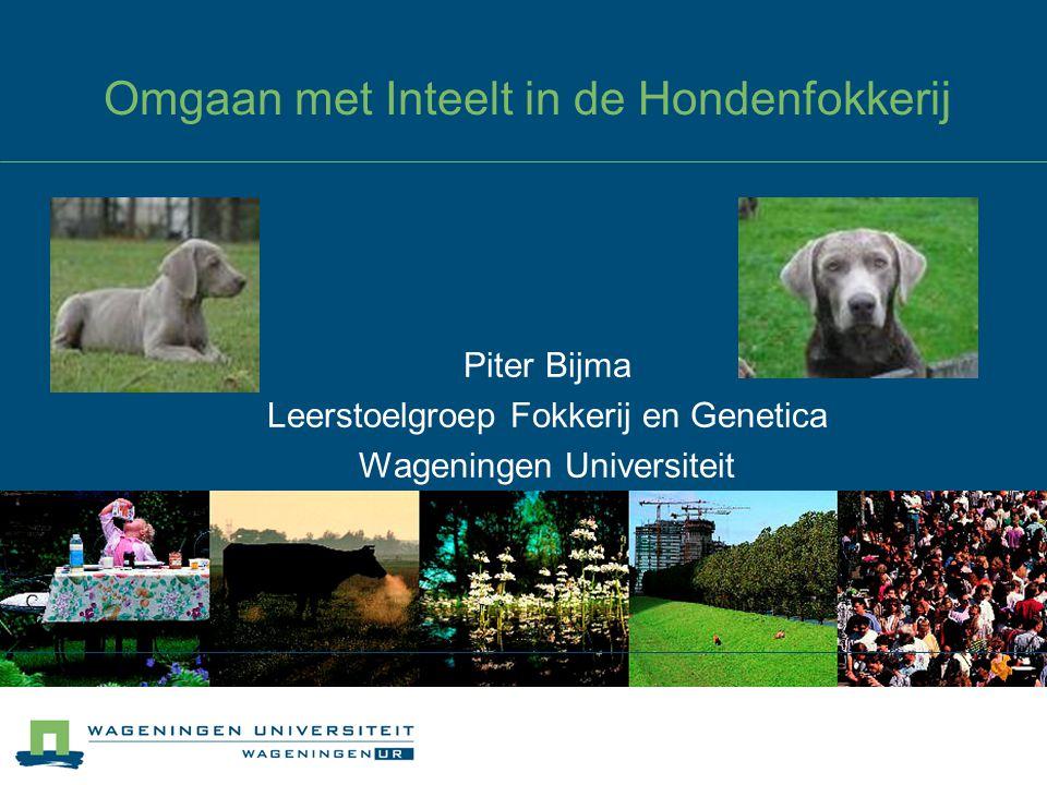 Omgaan met Inteelt in de Hondenfokkerij