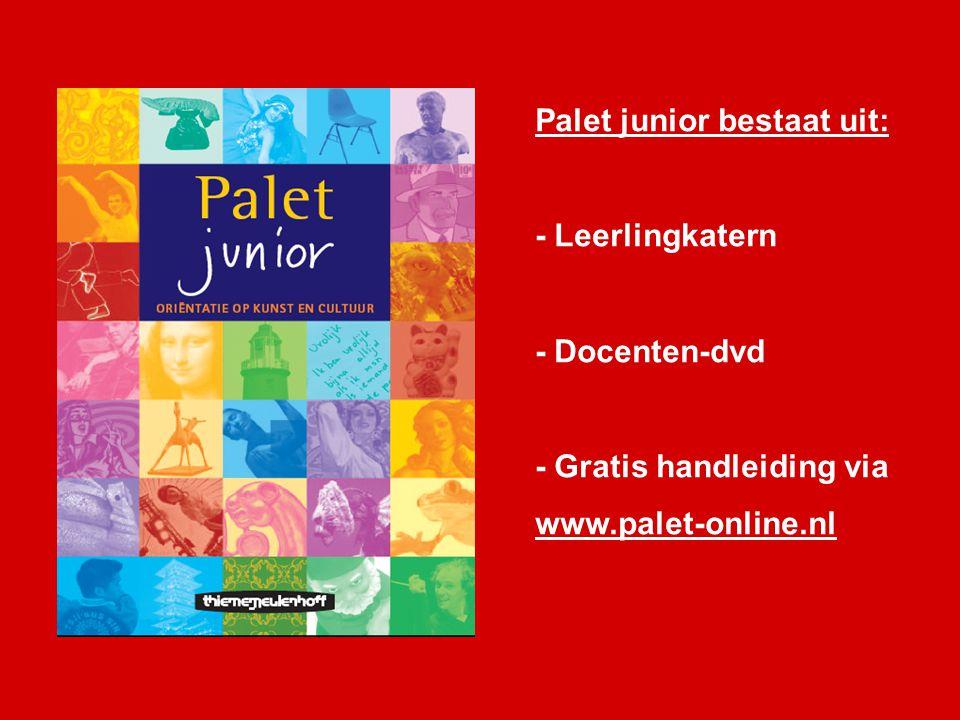 Palet junior bestaat uit: