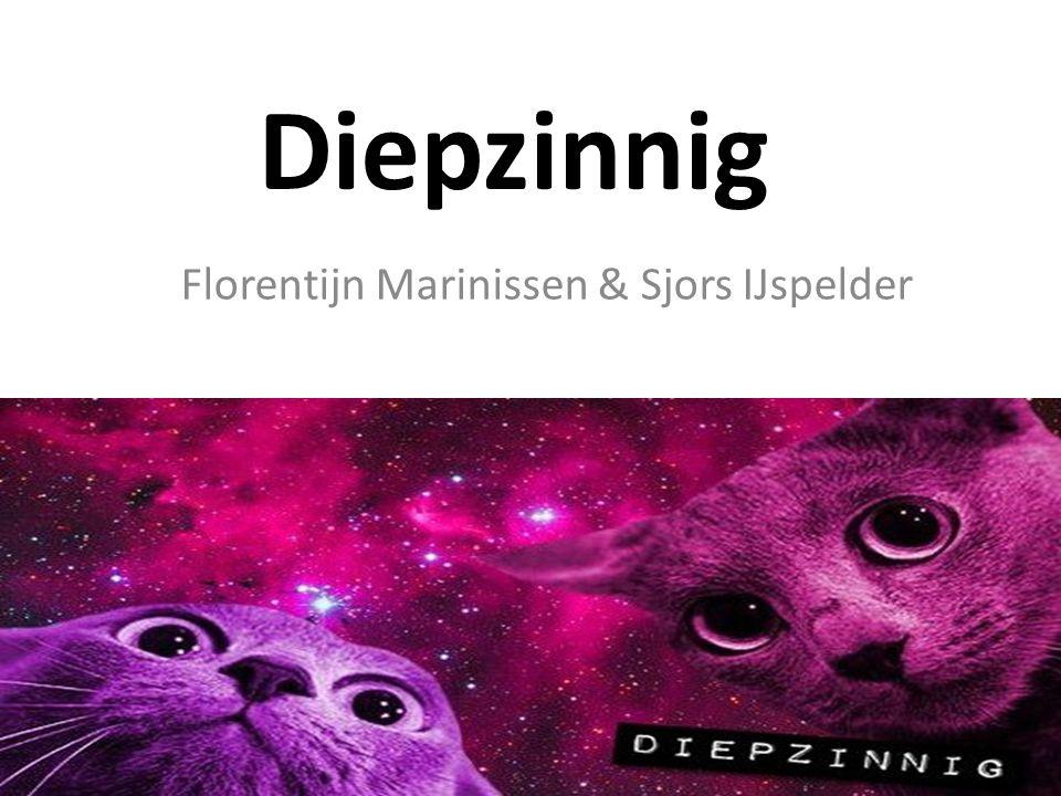 Florentijn Marinissen & Sjors IJspelder