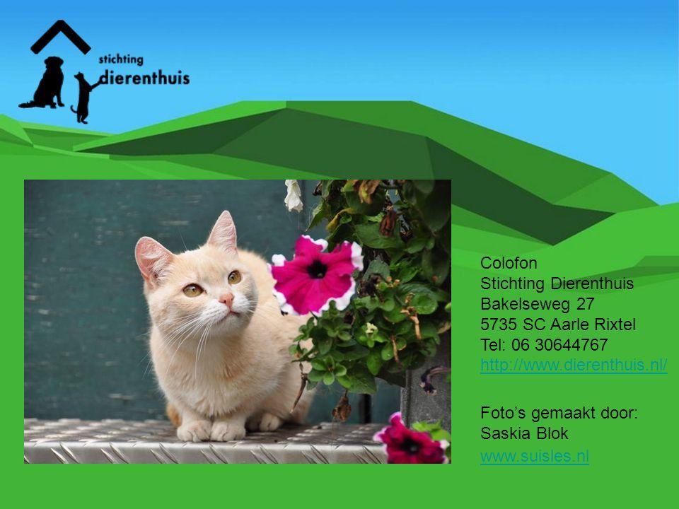 Colofon Stichting Dierenthuis. Bakelseweg 27. 5735 SC Aarle Rixtel. Tel: 06 30644767. http://www.dierenthuis.nl/