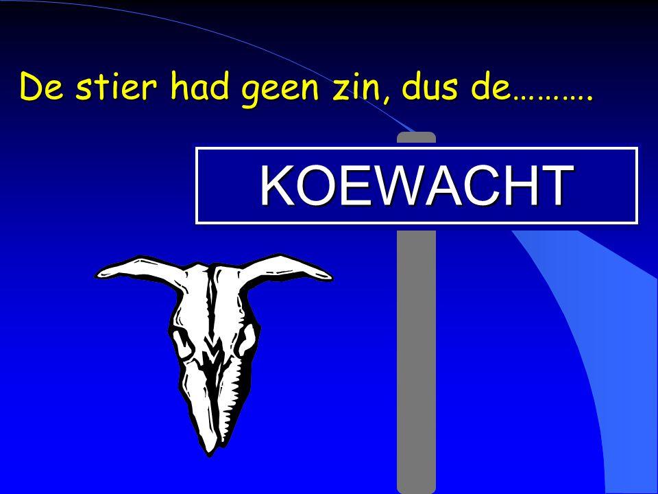 De stier had geen zin, dus de……….