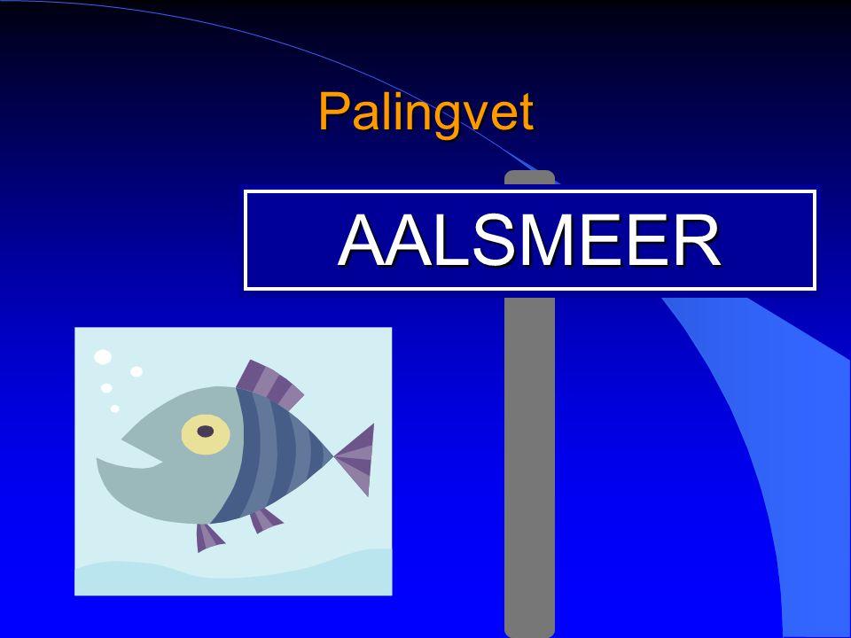 Palingvet AALSMEER