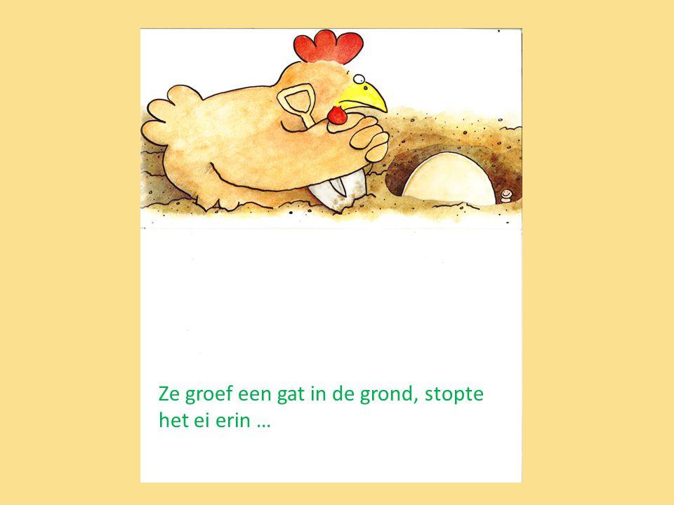 Ze groef een gat in de grond, stopte het ei erin …