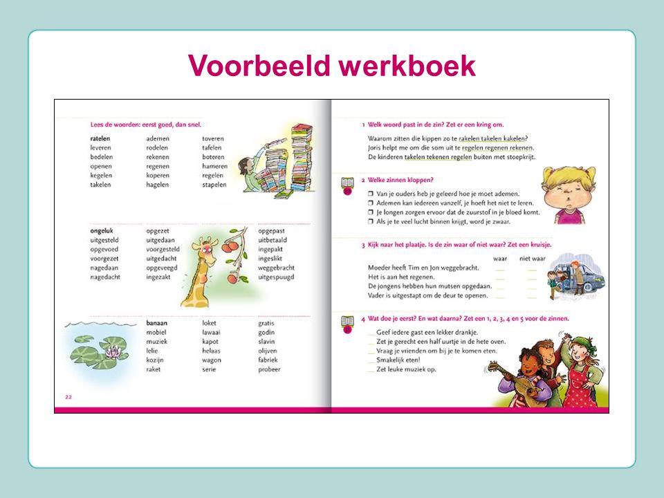 Voorbeeld werkboek