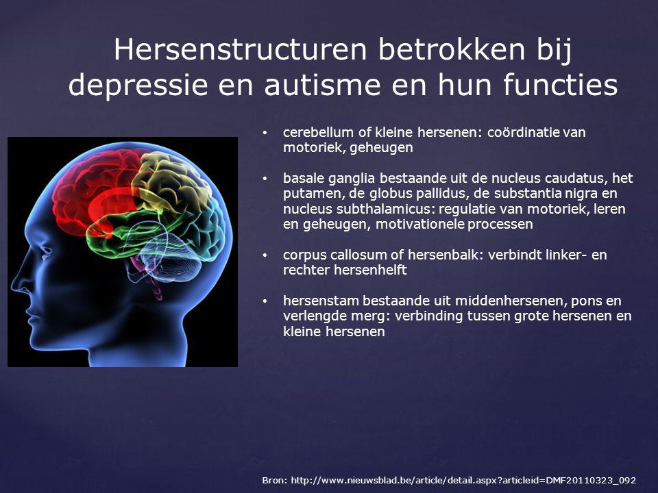 Hersenstructuren betrokken bij depressie en autisme en hun functies