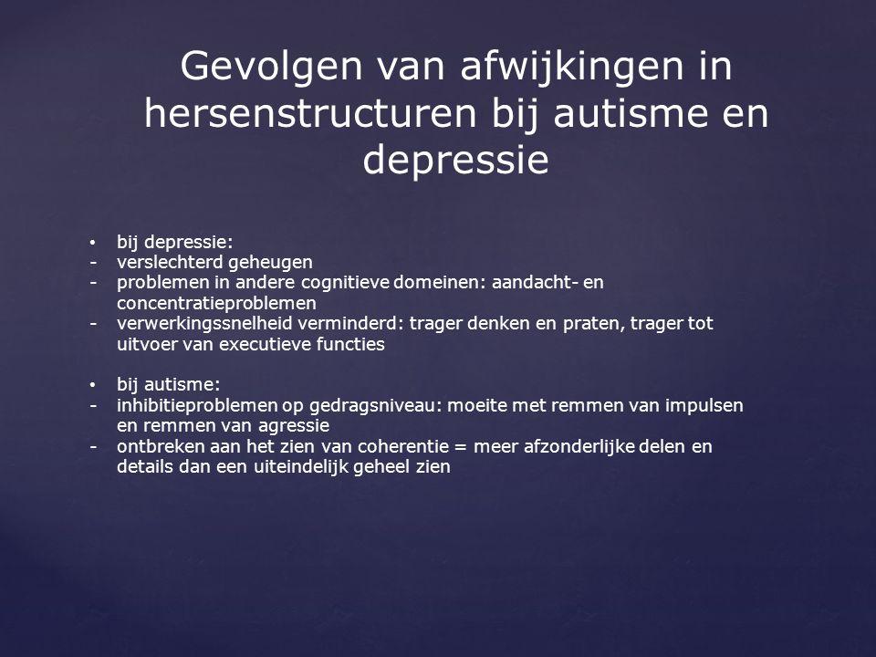 Gevolgen van afwijkingen in hersenstructuren bij autisme en depressie