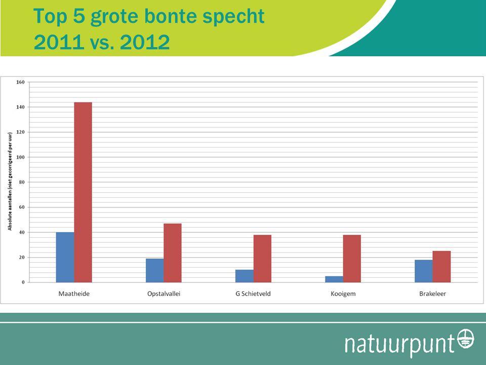 Top 5 grote bonte specht 2011 vs. 2012