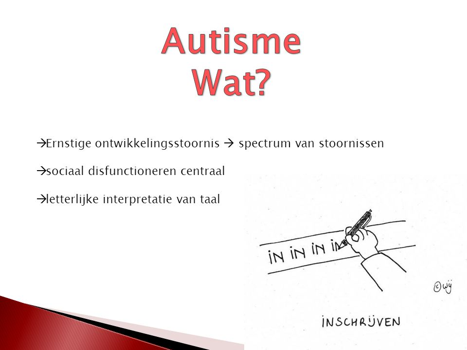 Autisme Wat Ernstige ontwikkelingsstoornis  spectrum van stoornissen