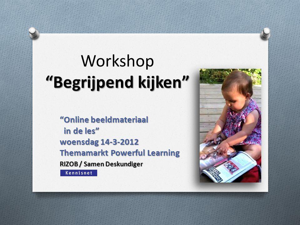 Workshop Begrijpend kijken