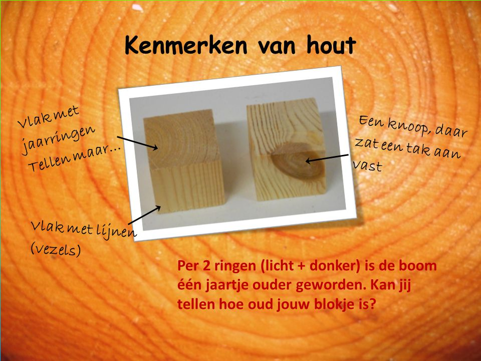 Kenmerken van hout Vlak met jaarringen Tellen maar…