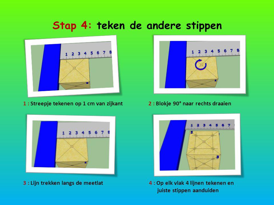 Stap 4: teken de andere stippen