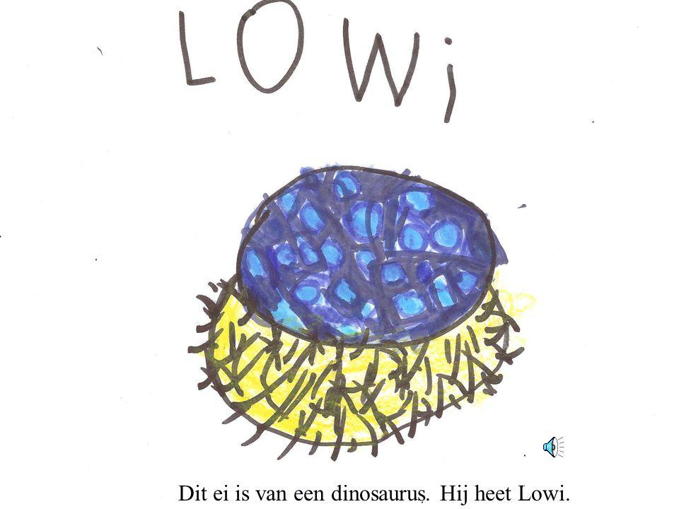 Dit ei is van een dinosaurus. Hij heet Lowi.